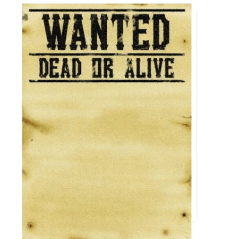 Gesucht! Wanted poster for German by annelouisep